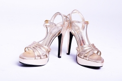 Model High Heel shoes 5 inches – platform shoes for women Gold 5
